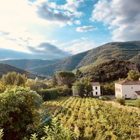 Coucou du dimanche et jolie balade en Occitanie